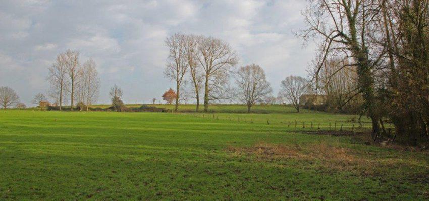 Natuurgebied Den Dotter, ideaal voor een weekendje wandelen tijdens een verblijf bij B&B Dotter17 in Aaigem