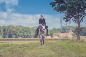 Paardrijden in de Vlaamse Ardennen